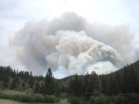 Understanding Fire Restrictions